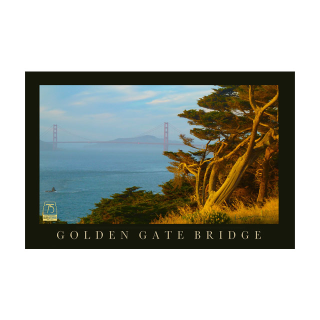 02-Golden_Gate_Bridge_with_Trees